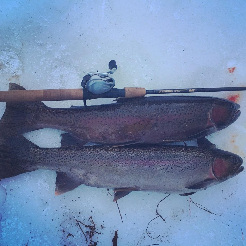 Big fish bite me 10 tips that will help you catch more for Steelhead fishing tips